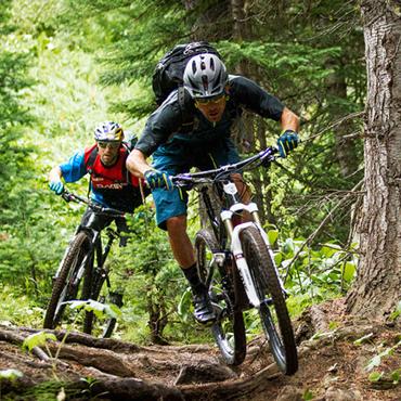 http://www.wiphost.com/extremesport/cdn/mountainbike.jpg
